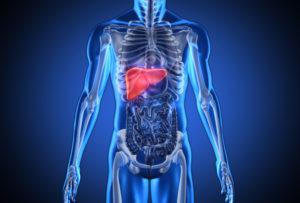 liver2-1500x1013
